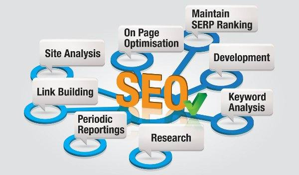 SEO training company in jodhpur