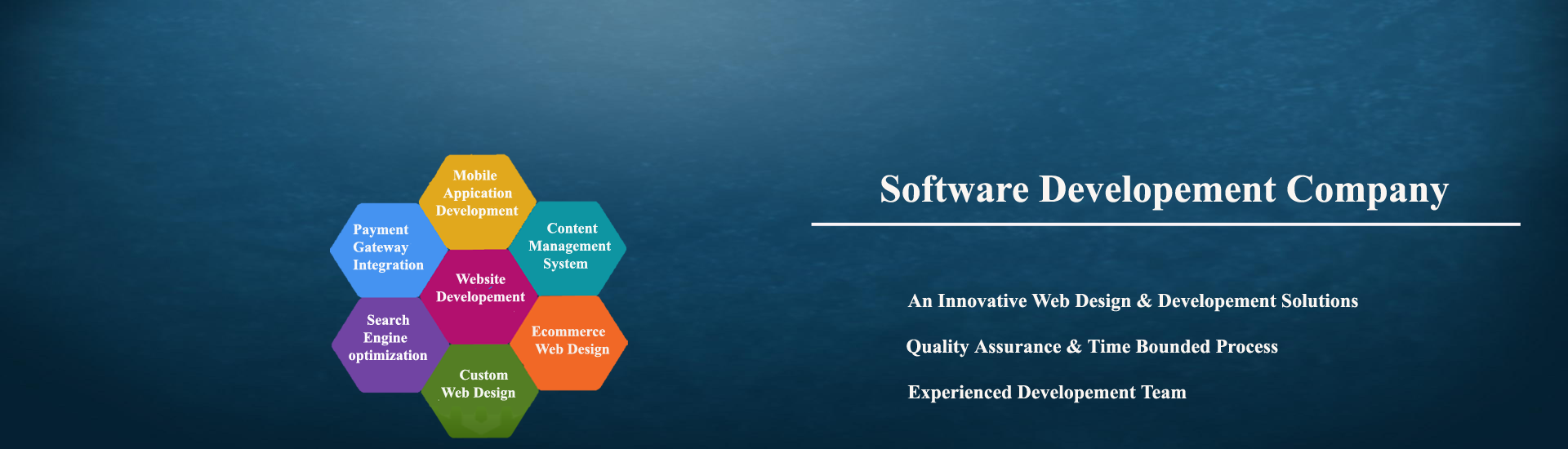 Software Company In Rajasthan Software Company In India